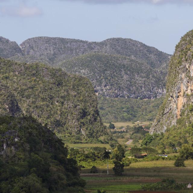 """Limestone Mogotes, Vinales Valley, UNESCO World Heritage Site, Pinar del Rio,..."" stock image"