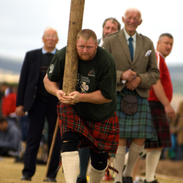 """Tossing the caber at Montrose Highland Games. Watched by Judge Sandy Gray..."" stock image"