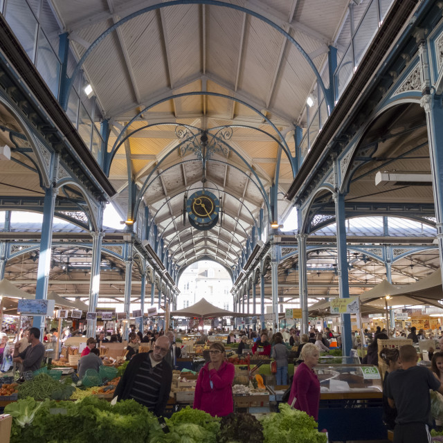 """Market hall, Dijon, Burgundy, France, Europe"" stock image"
