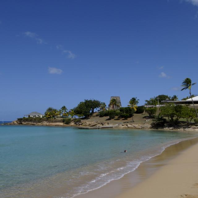 """Hawksbill Beach, Hawksbill Hotel, Antigua, Leeward Islands, West Indies,..."" stock image"