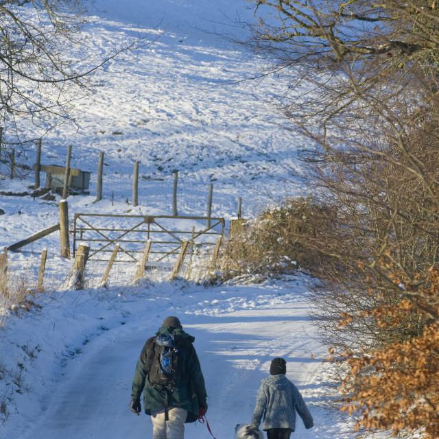 """A man and boy with a dog walk along a snowy lane, Newbridge-on-Wye, Powys,..."" stock image"