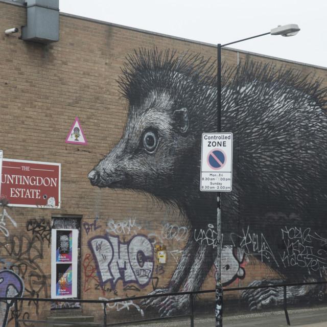 """""""Hedgehog by Roa, Chance Street, London, E1, England, United Kingdom, Europe"""" stock image"""