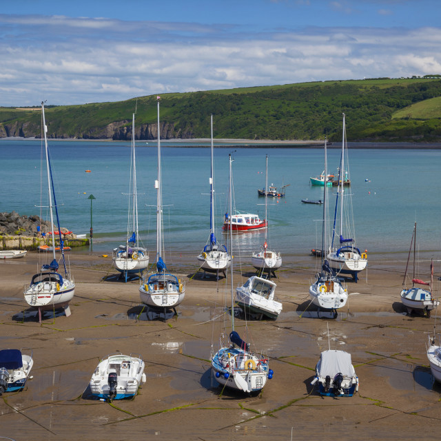 """New Quay, Ceridigion, Dyfed, West, Wales, United Kingdom, Europe"" stock image"