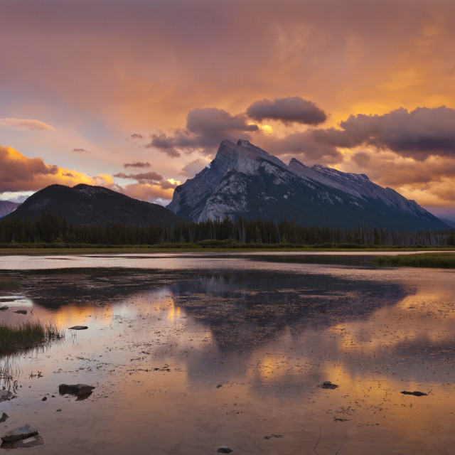 """Mount Rundle rising above Vermillion Lakes drive at sunset, Banff National..."" stock image"