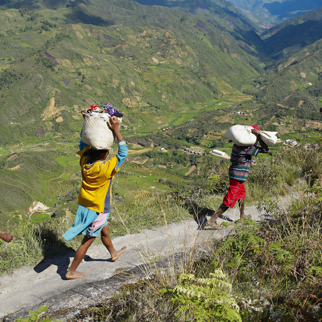 """""""Zafimaniry country people back from market, Madagascar, AFrica"""" stock image"""
