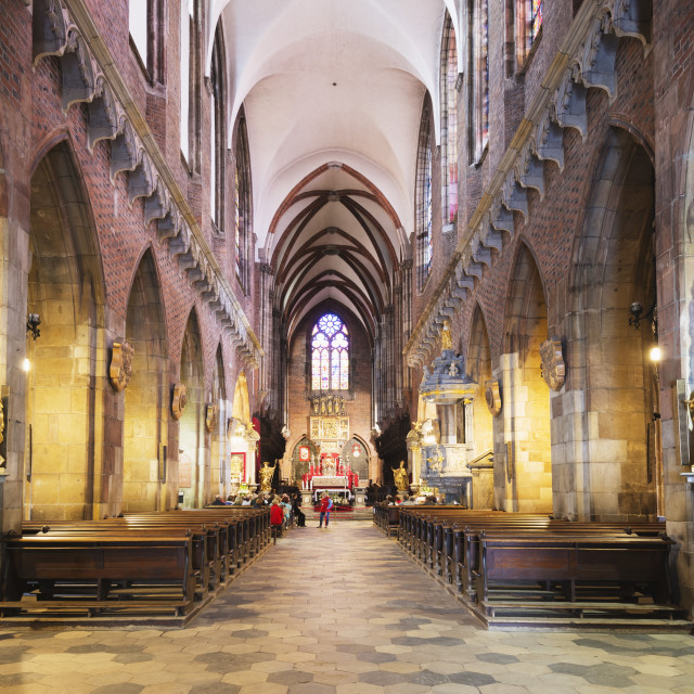 """""""Cathedral of St. John the Baptist, Wroclaw, Silesia, Poland, Europe"""" stock image"""