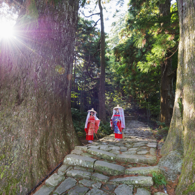 """Pilgrims on Daimon-zaka Nachi tokaido pilgrimage route, UNESCO World Heritage..."" stock image"
