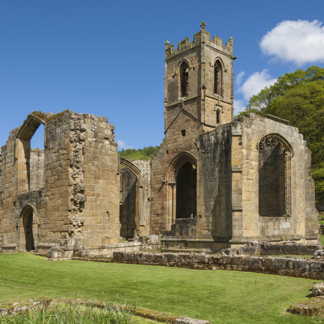 """""""Church ruin of the 14th century Mount Grace Carthusian Priory, North..."""" stock image"""