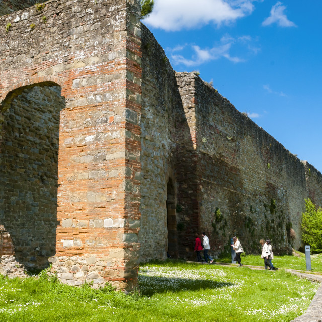 """""""City ramparts (Medicean walls) dating from the 14th century, Porta Stufi,..."""" stock image"""