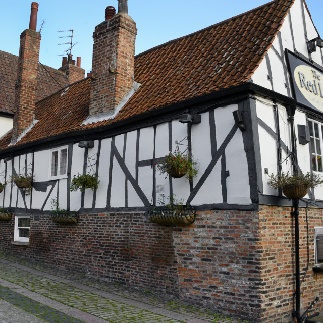 """""""The 13th century half-timbered Red Lion public house, Merchant Place, York,..."""" stock image"""