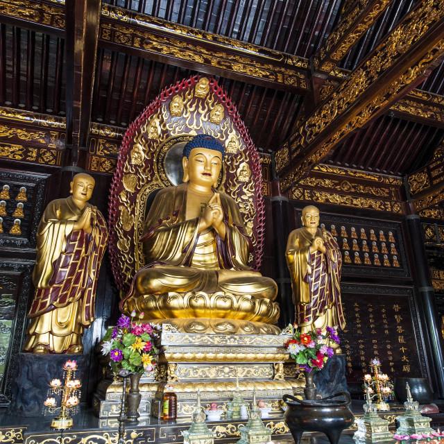"""""""Wild Goose Pagoda, Xian, Shaanxi, China, Asia"""" stock image"""