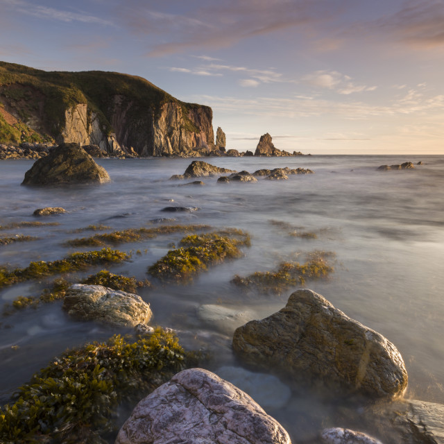 """Bantham seashore on an incoming tide, South Hams, Devon, England, United..."" stock image"