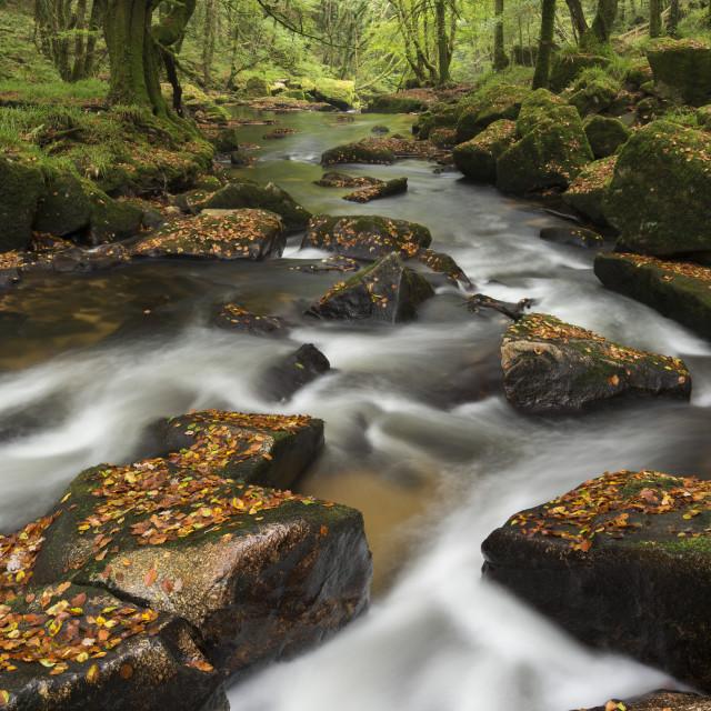 """""""River Fowey tumbling through rocks at Golitha Falls, Cornwall, England,..."""" stock image"""