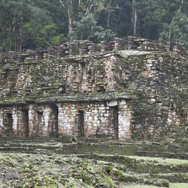 """Mexico, Chiapas, Yaxchilan, Mayan Archaeological Site, Structure 19"" stock image"