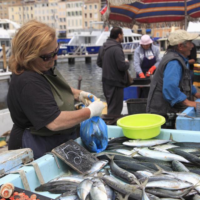 """Fish Market, Vieux Port (Old Port), Harbor, Marseille, Bouches du Rhone,..."" stock image"