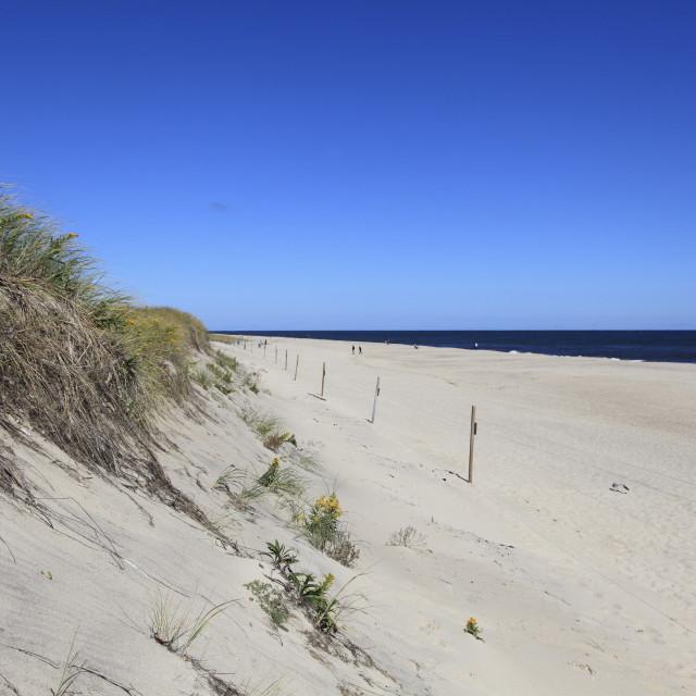"""Nauset Light Beach, Cape Cod National Seashore, Orleans, Cape Cod,..."" stock image"