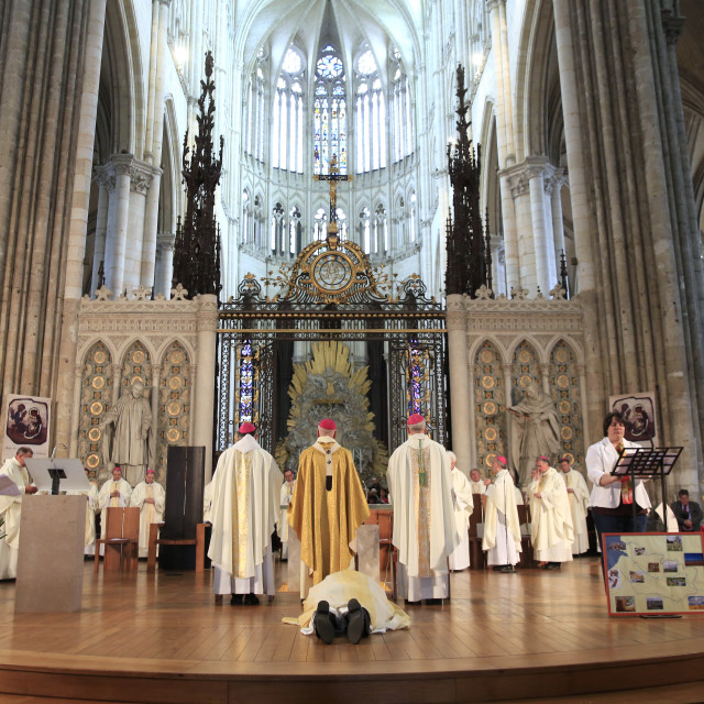 """Amiens cathedral. Episcopal ordination. Litany of the Saints. Bowing-down."" stock image"