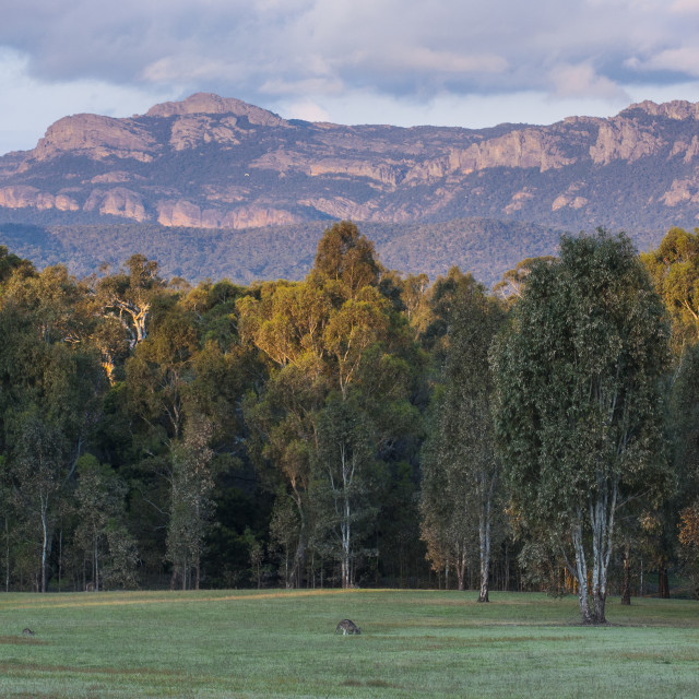 """The cliffs of the Grampians National Park at sunset, Victoria, Australia,..."" stock image"
