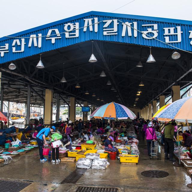 """Market, Busan, South Korea, Asia"" stock image"