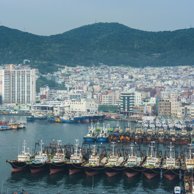 """View over the harbour and fishing fleet of Busan, South Korea, Asia"" stock image"