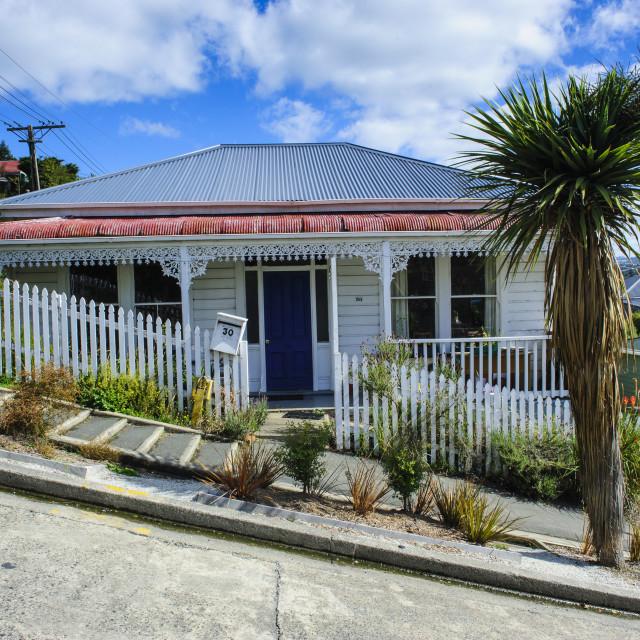"""Baldwin street the worlds steepest residential street, Dunedin, South Island,..."" stock image"