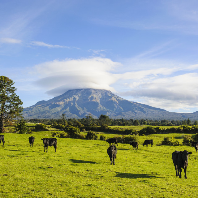 """Mount Taranaki, North Island, New Zealand, Pacific"" stock image"