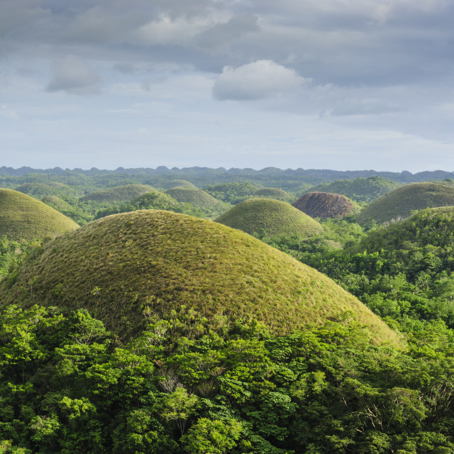 """""""Chocolate Hills, Bohol, Philippines, Southeast Asia, Asia"""" stock image"""