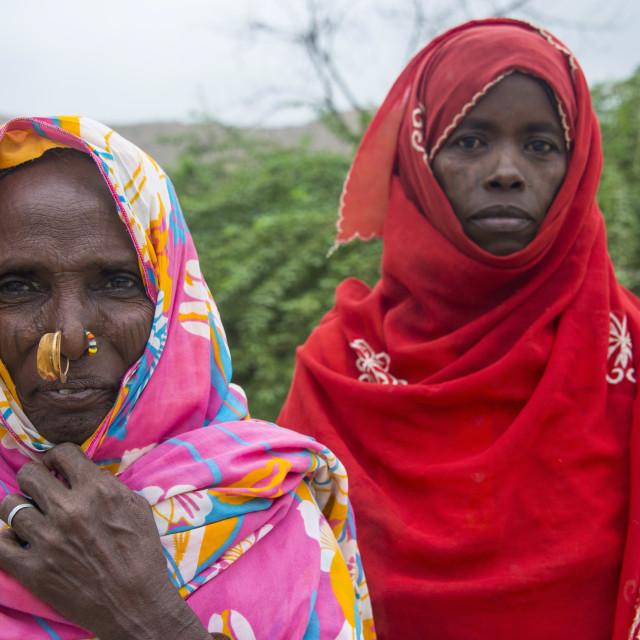 """""""Portrait of two Eritrean Bedouin women in the lowlands of Eritrea, Africa"""" stock image"""