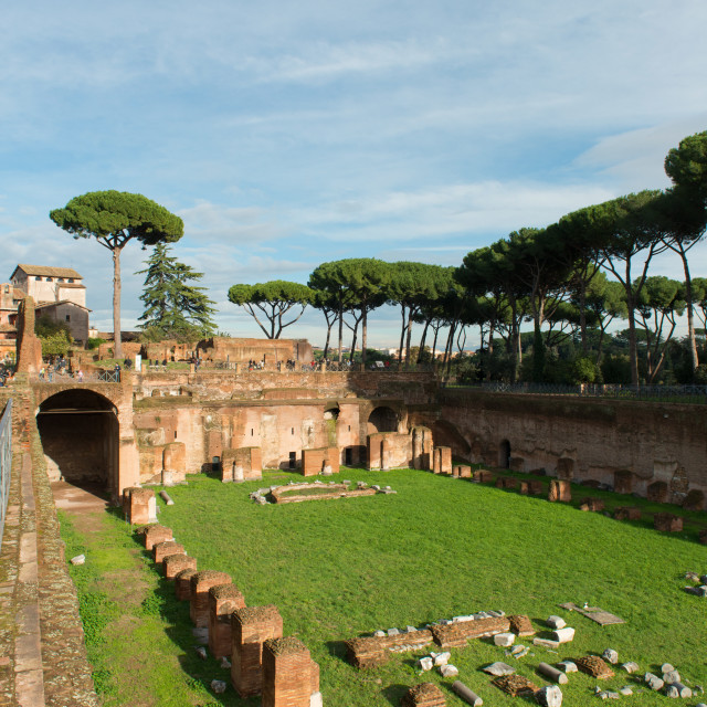 """Imperial palace at Forum Romanum, Palatine Hill, Rome, Lazio, Italy, Europe"" stock image"