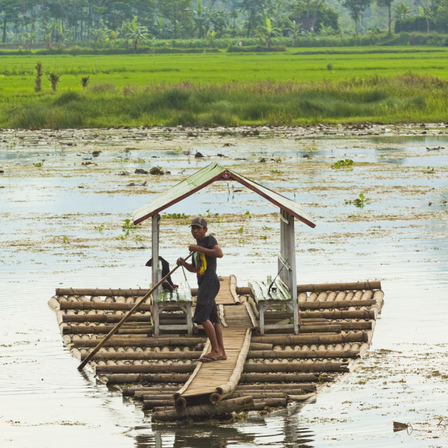 """Man punting bamboo raft on Situ Cangkuang lake at this village known for its..."" stock image"