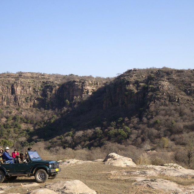 """""""Tourists on safari in open jeep, Ranthambore National Park, Rajasthan, India,..."""" stock image"""