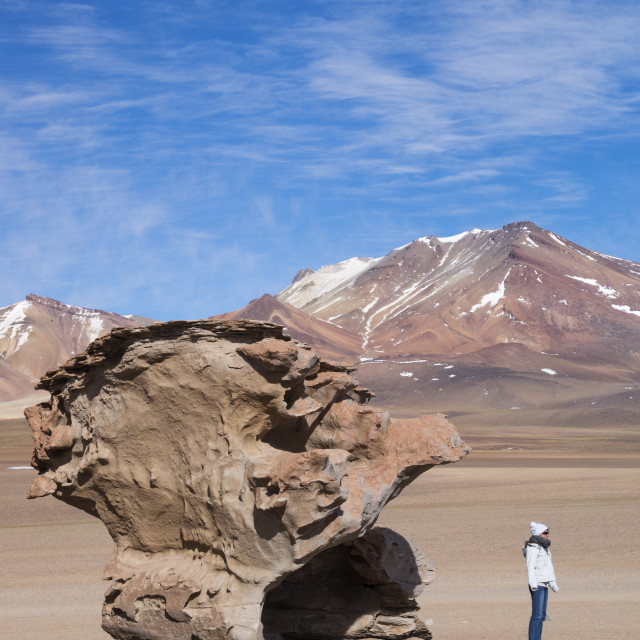 """""""Tourists pose in front of the Stone Tree formation at Pampa Siloli, Bolivia,..."""" stock image"""