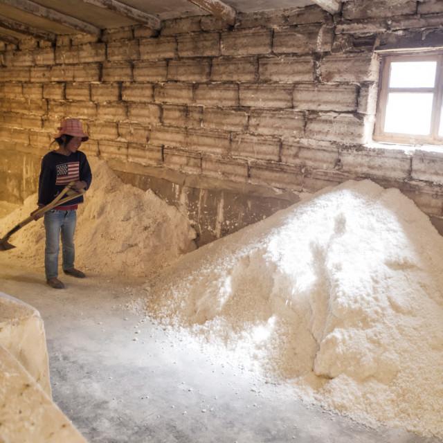 """Small girl shoveling salt inside a Salt factory where workers process salt..."" stock image"