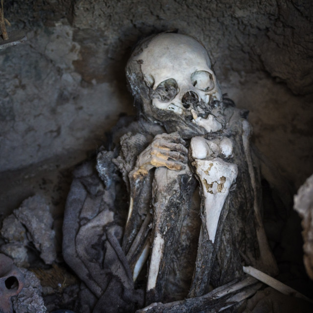 """Skeletal remains at Necropolis, 1200-1450AD, San Juan de Rosario,..."" stock image"