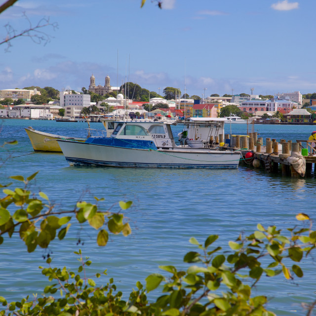 """""""View of St. Johns from Harbour, St. Johns, Antigua, Leeward Islands, West..."""" stock image"""