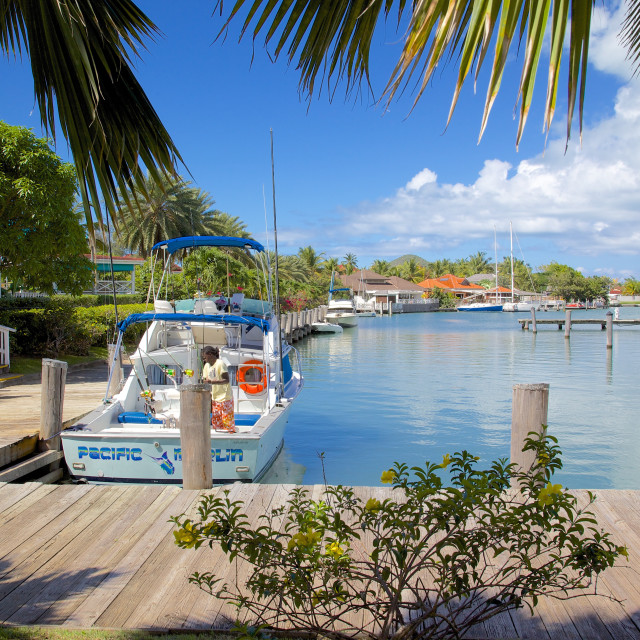 """""""Harbour, Jolly Harbour, St. Mary, Antigua, Leeward Islands, West Indies,..."""" stock image"""