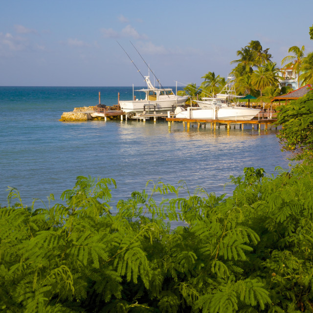 """Coast near Gracefield, St. Georges, Antigua, Leeward Islands, West Indies,..."" stock image"