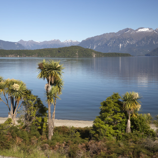 """""""Frasers Beach and Lake Manapouri, Manapouri, Southland, South Island, New..."""" stock image"""