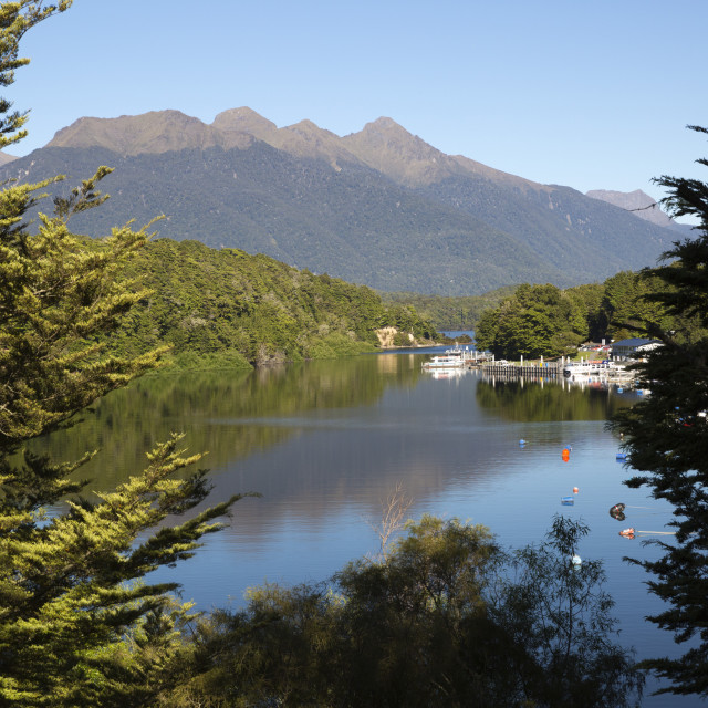 """""""Home Creek on Lake Manapouri, Manapouri, Southland, South Island, New..."""" stock image"""