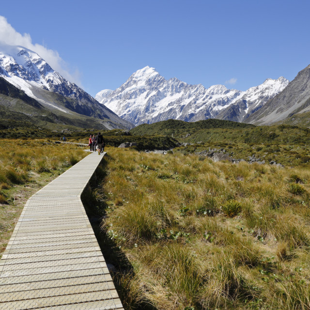 """Boardwalk on Hooker Valley Trail with Mount Cook, Mount Cook National Park,..."" stock image"