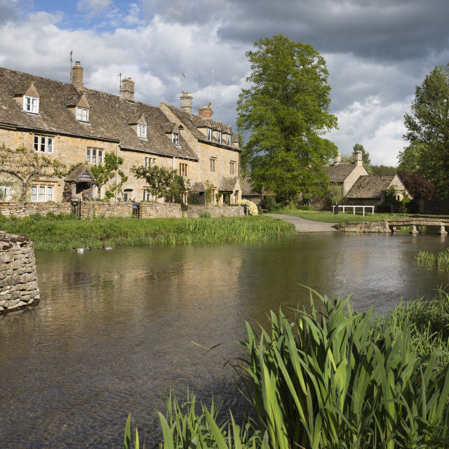 """""""Cotswold stone cottages on the River Eye, Lower Slaughter, Cotswolds,..."""" stock image"""