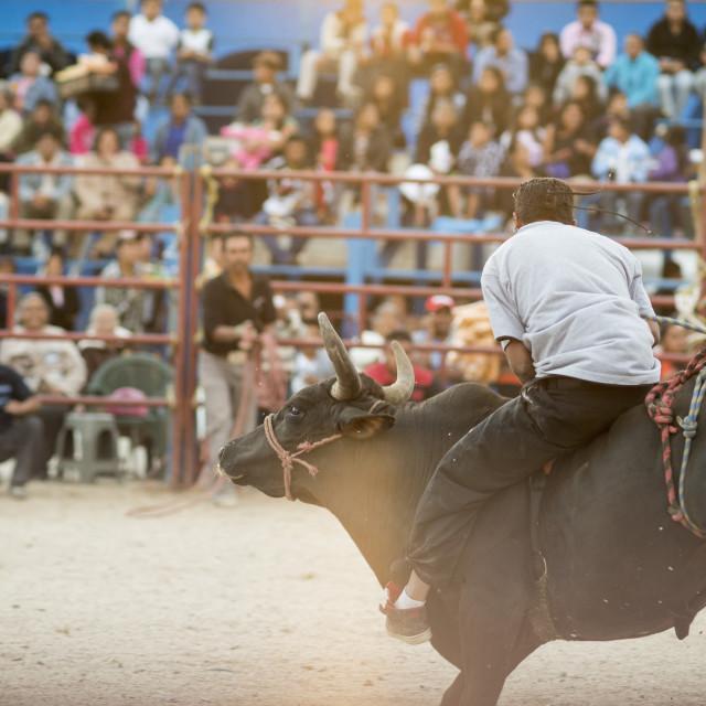 """""""Rodeo at Santa Cruz Papalutla, Oaxaca, Mexico, North America"""" stock image"""