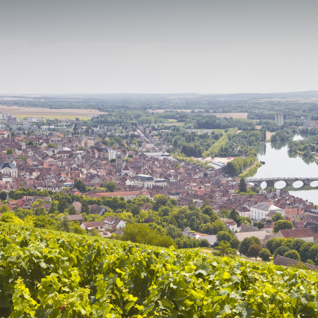 """""""Looking over the vineyards to the town of Joigny, Yonne, Burgundy, France,..."""" stock image"""
