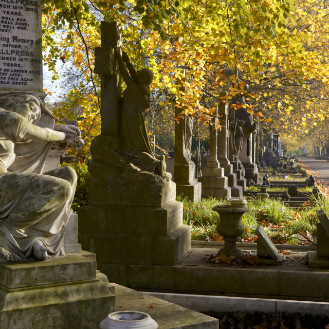 """Grave stones on a sunny autumn day at the City of London Cemetery, London,..."" stock image"