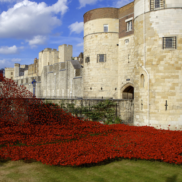 """Blood Swept Lands and Seas of Red installation at The Tower of London marking..."" stock image"