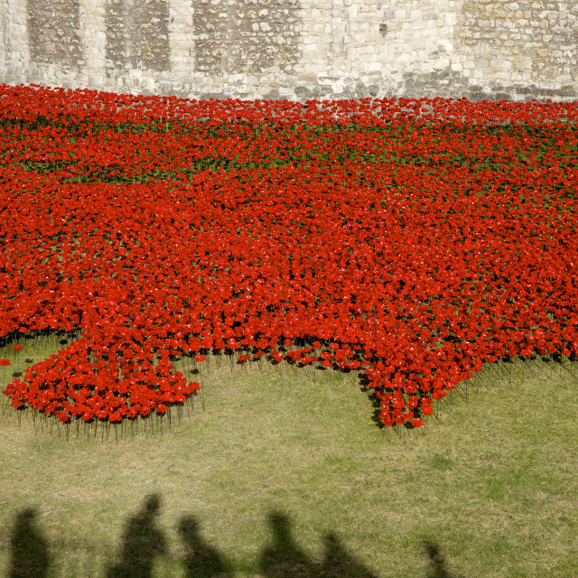 """""""Shadows of people viewing Blood Swept Lands and Seas of Red installation at..."""" stock image"""
