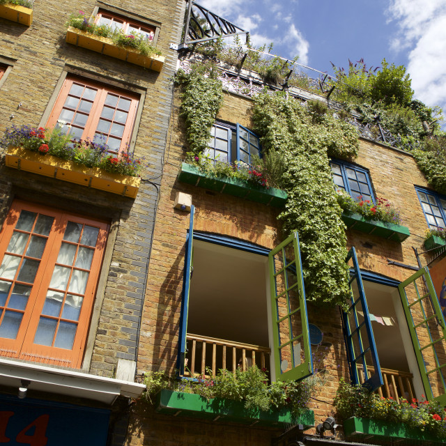 """Neals Yard in Covent Garden, London, England, United Kingdom, Europe"" stock image"