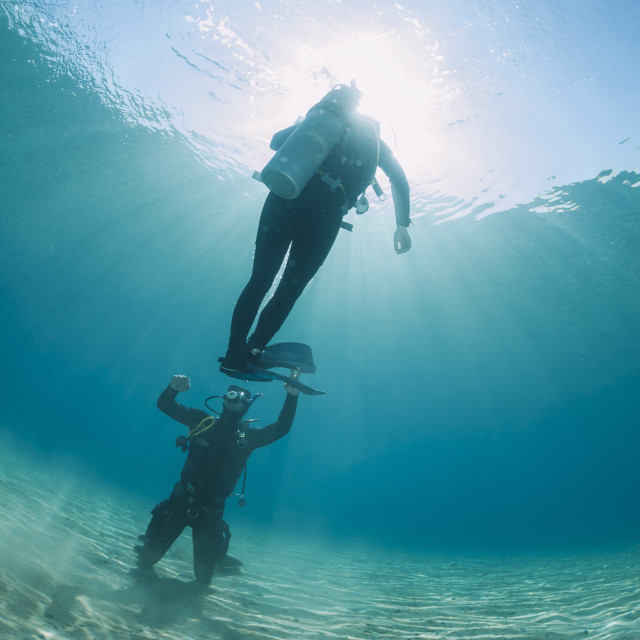 """Scuba diving instructor and student completing hovering skills in shallow..."" stock image"