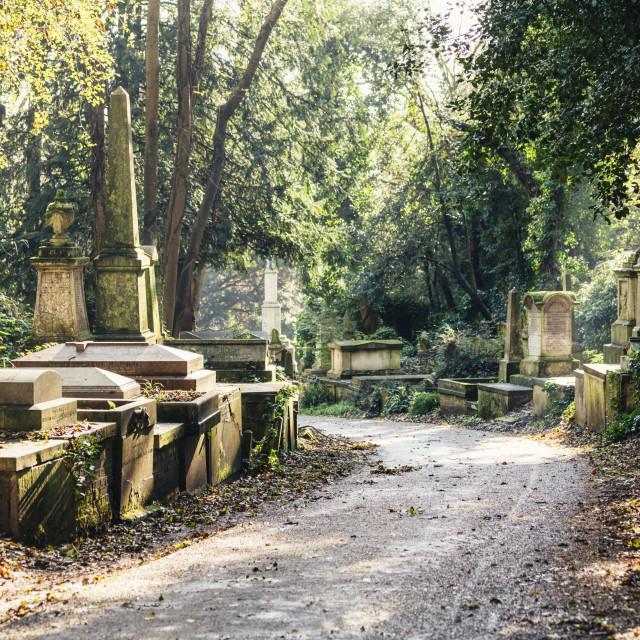 """""""Highgate Cemetery west, London, England, United Kingdom, Europe"""" stock image"""