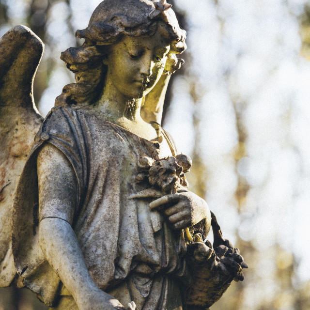 """""""Statue of woman angel, Highgate Cemetery west, London, England, United..."""" stock image"""